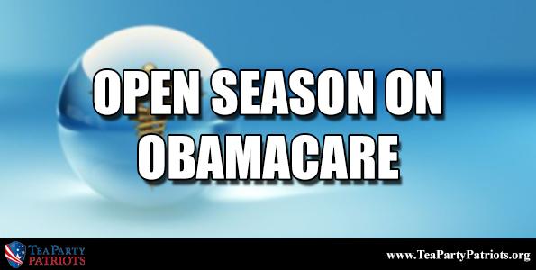 Open Season Thumb